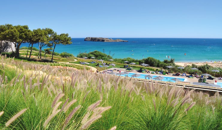 View of the beach club long blue pool behind blades of green grass and overlooking the sandy beach and ocean