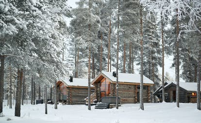 Arctic Retreat cabins exterior, set amongst snowy woodland