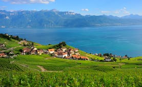 Village overlooking Lake Geneva, vineyards, cottages, lake, mountains in background