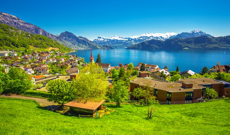 Village Weggis on Lake Lucerne, houses, trees, verdant, lawn, snowcapped mountains in background