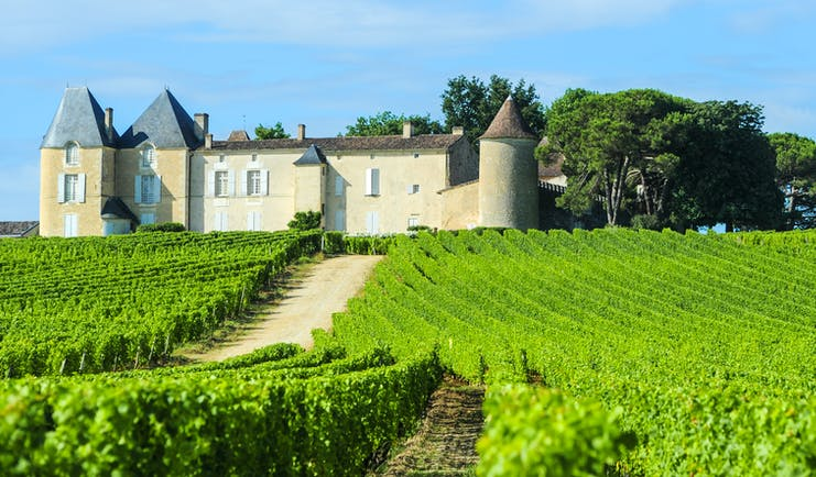 chateau with turrets amid green vineyard at chateau d'yquem bordeaux