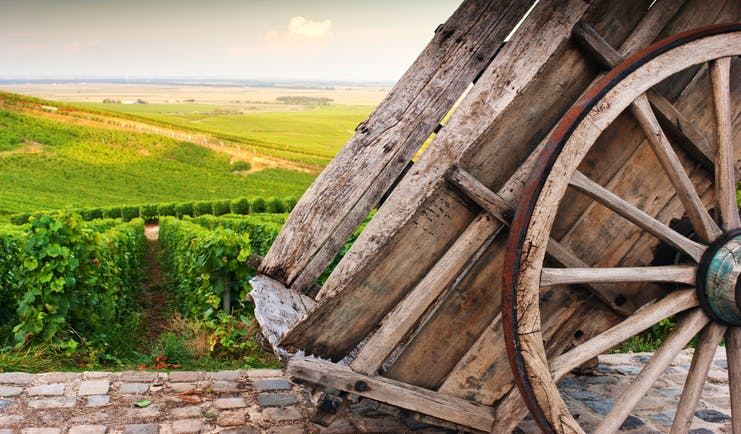 Cart and vineyards in the Chamapagne wine region near Cramant