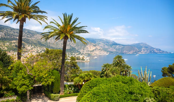 Palm trees with views over the sea at St Jean Cap Ferrat