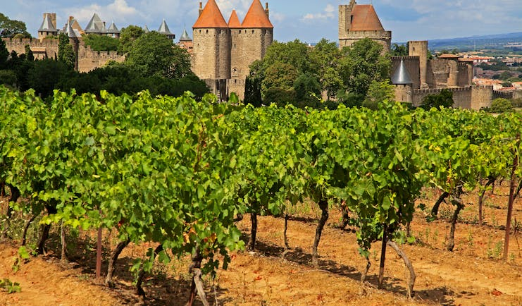fortified town of carcassonne with vineyard