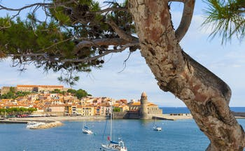 View over the water with boats and tree to Collioure