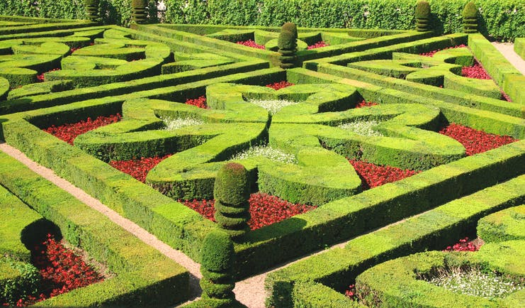 Formal green and red clipped borders in garden