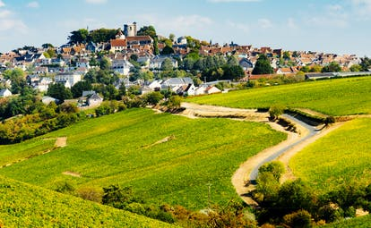 Rolling hills with patterns of vineyards with village of Sancerre on hilltop
