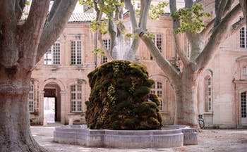 Le Cloitre Saint Louis Avignon exterior fountain large stone building and trees