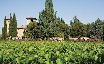 Chateau de Berne Provence garden view of vineyard