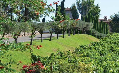 Chateau de Berne Provence gardens with topiary trees and red flowers
