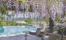 Terre Blanche Hotel and Spa Provence exterior pool foliage infinity pool from lounging area with purple flowers