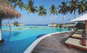 Centara Ras Fushi pool, sun loungers, palm trees, views across the sea