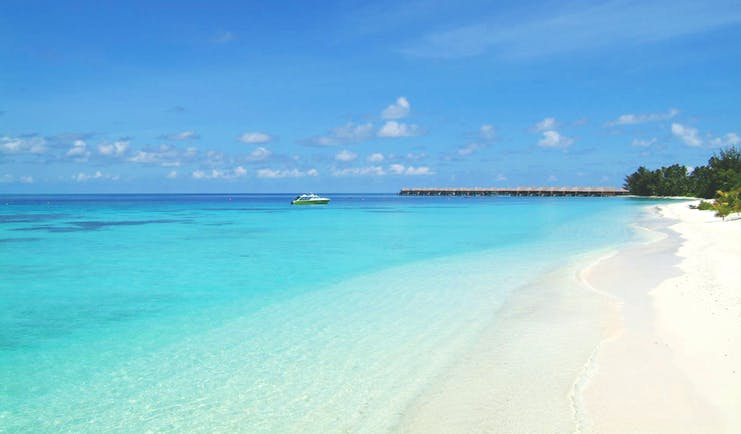Coco Bodu Hithi beach, white sand, clear blue waters