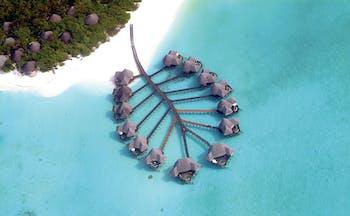 Coco Palm Dhuni Kolhu Maldives lagoon villas aerial shot