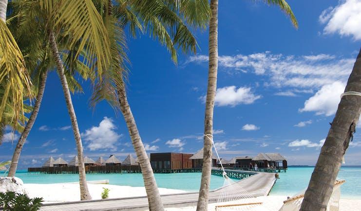 Conrad Maldives spa retreat exterior villas palm trees white sandy beach