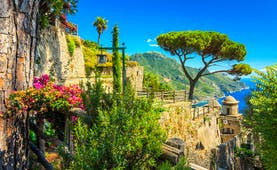 Umbrella pine and flowers and plants in stone terraces of the Villa Rufolo in Ravello with the sea in the distance