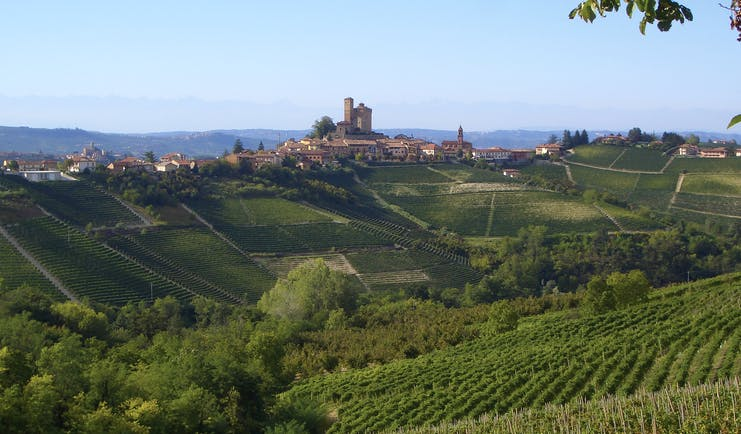Village in distance beyond green sloping vineyards in Piemonte