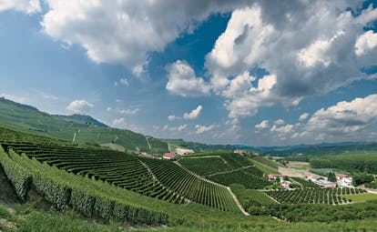 Rolling, hilly vineyards of Piemonte with clouds in blue sky