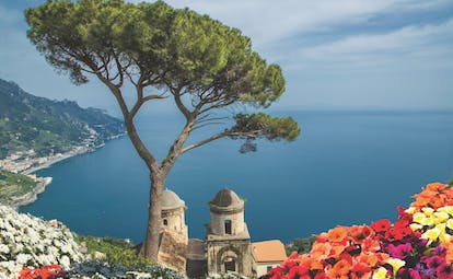 Umbrella pine tree on cliff with church towers and red flowers at Villa Rufolo Ravello