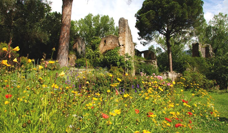 Ninfa garden ruins with meadow and trees