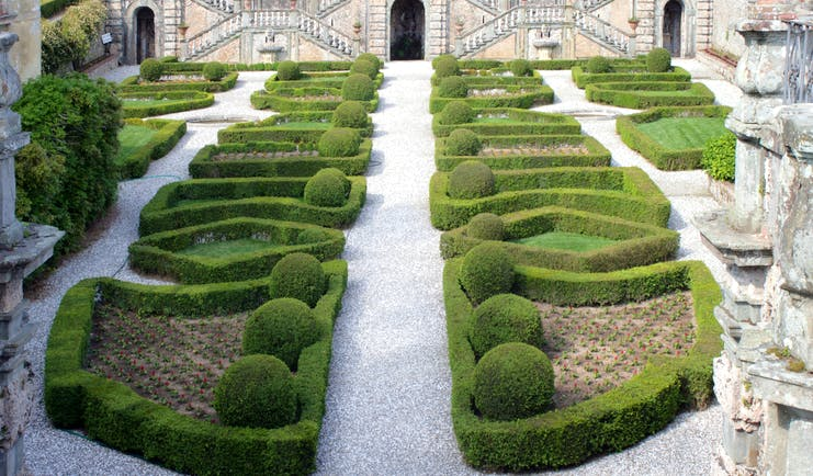 Parterre of box and in distance terraced stonework at Villa Garzoni