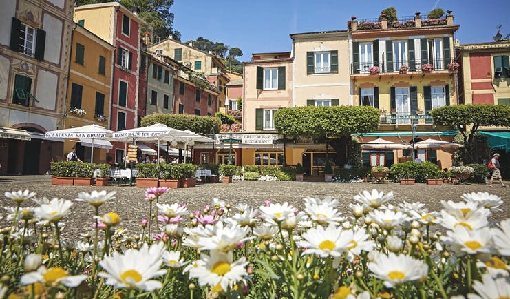Splendido Portofino exterior hotel on the piazza outdoor seating area daisies in the foreground