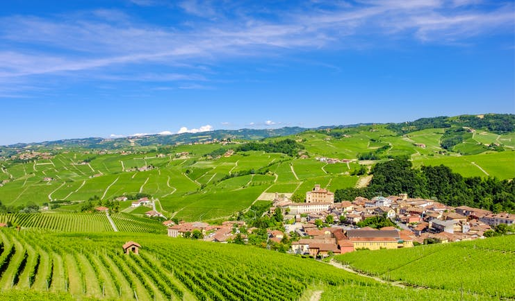 Distant village of Barolo amid vineyards in Piemonte