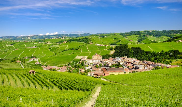 Village of Barolo in middle of rows of green vineyards in Piemonte