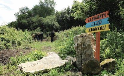 Foresteria La Planeta Sicily winery rural countryside