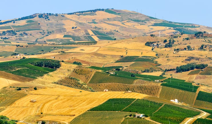 Patchwork of yellow, green and brown fields with hills in Sicily