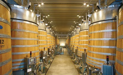 Barrels of wine lined up next to one another in the barrell cellar