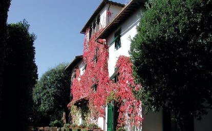 Autumn exterior with red shade of leafy vines climbing up white hotel exterior