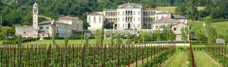 Palladian villa of Rinaldi Barbini near Asolo with rows of vines in spring