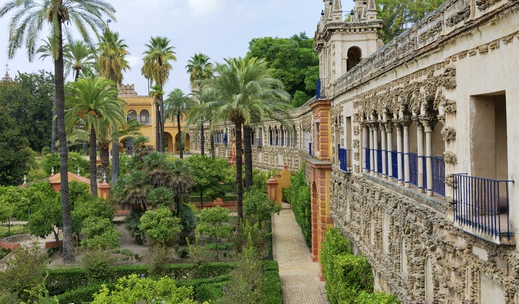 Palm trees and flower beds outside the walls of the Alcazar in Seville Andalusia