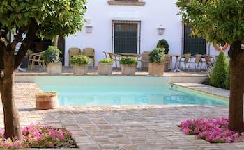 Hotel Puerta de la Luna Andalucia pool seating wicker chairs trees