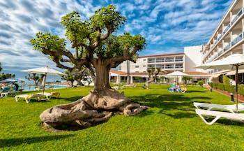 Parador de Nerja gardens, trees, outdoor pool, sun loungers, umbrellas