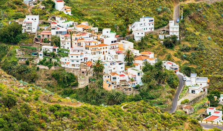 White houses clustered on hillside with palm trees and aloe vera spiky plants in Tenerife