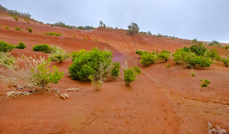 Bright orange red soil of hillside with hardly any green bushes in La Gomera in the Canaries