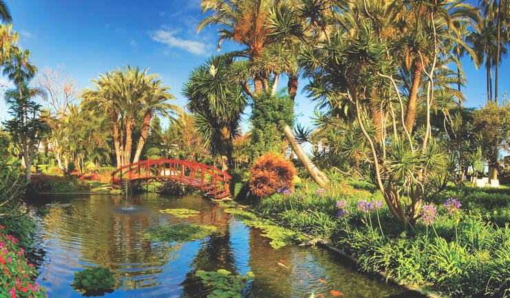 Hotel Botanico Tenerife gardens small bridge over pond trees shrubbery flowers