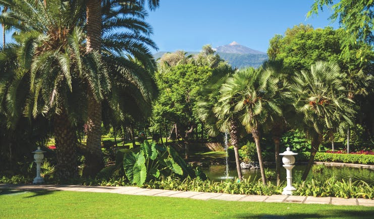 Hotel Botanico Tenerife grounds gardens trees and shrubbery
