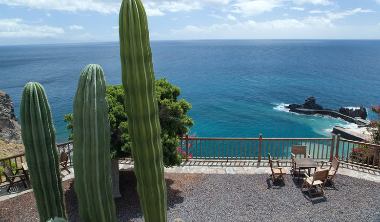 View of the sea with rocks in and cactus in front