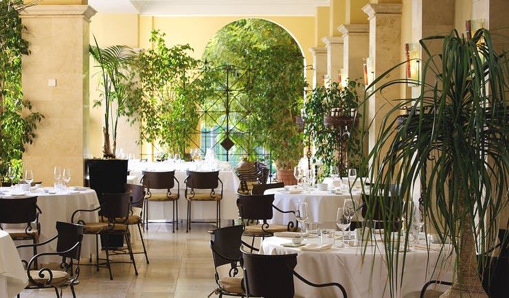 Denia Marriot La Sella Eastern Spain restaurant plants tables chairs elegant décor