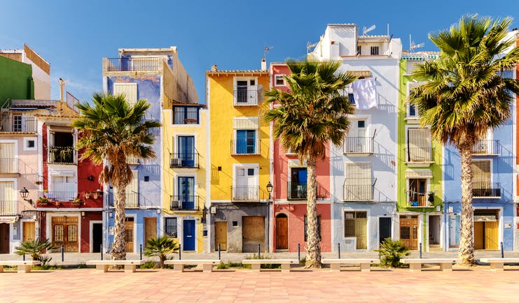 Narrow houses on the beach lined with palms painted bright colours with shutters at Villajoyosa near Alicante
