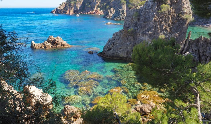 Rocky grey cliffs with Mediterranean vegetation dropping into turquoise marine sea with underwater rocks on the Costa Brava