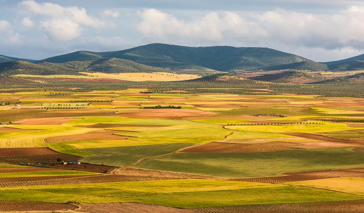 Fields in colours of yellow and brown and green with mountains in distances in Castille la Mancha