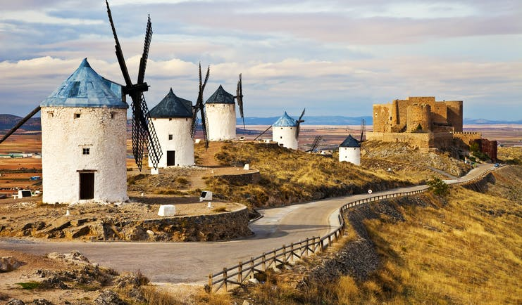 Traditional white windmills with conical roofs in arid landscape of La Mancha