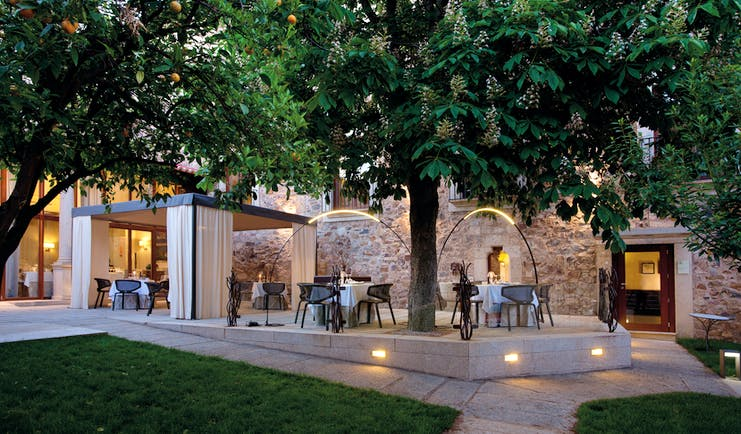 Outdoor dining terrace with tables and chairs set out shaded by a large tree
