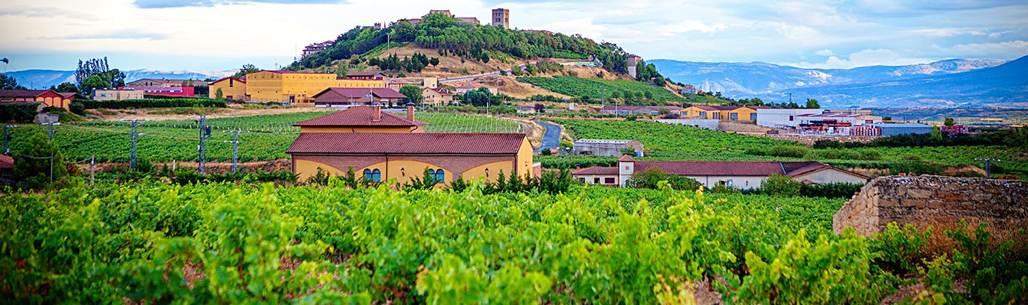 La Rioja landscape with hill, vines and buildings
