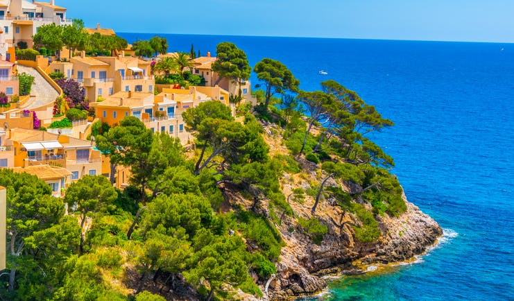 Yellow houses with blue shutters on cliff with umbrella pine trees with blue sea below at Canyamel Mallorca