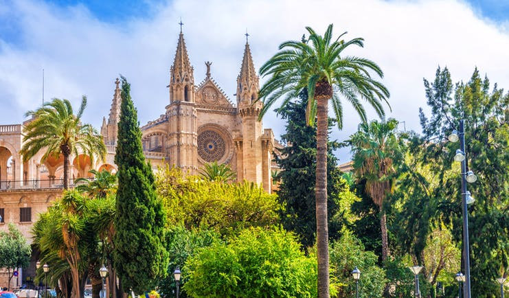 The spires and front of the Cathedral of Le Seu flanked by palm trees in Palma Mallorca